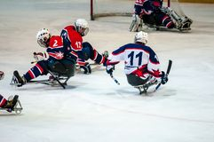 Spel in het hockey van de ijsslee Stock Foto