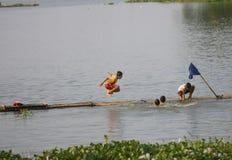 Spel in het water Stock Foto
