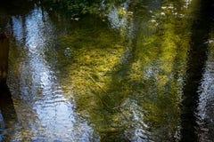 Spel van de kleuren in de rivier Royalty-vrije Stock Foto