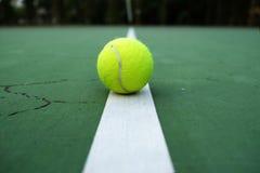 Spela den modiga tennisbollen på tennisbanan Royaltyfri Fotografi