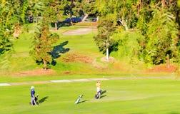 Spela golf på en solig dag Royaltyfri Fotografi
