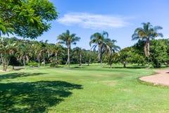 Spela golfboll i hål den gröna flaggan för golf scenisk kurs royaltyfria foton