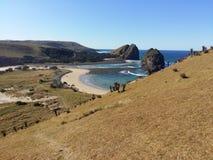 Spela golfboll i h?l i v?ggen Transkei lös kust, Sydafrika royaltyfri foto