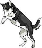 Spela hunden Royaltyfri Illustrationer