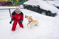 Spela med hunden i snö Arkivbilder