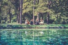 Spela musik i natur Royaltyfria Foton