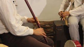 Spela på flöjter Royaltyfri Bild