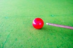 Spela snooker Royaltyfri Bild