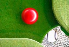 Spela snooker Royaltyfri Fotografi
