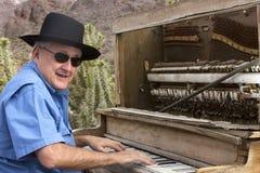 Spelare för HonkyTonk piano i öken royaltyfri bild
