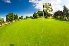 Speld en kop bij zetten groen van golfcursus Stock Foto's