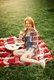 Speld-op Vrouw bij de Picknick Stock Afbeelding