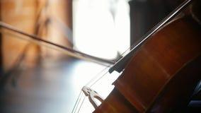 Spelend de cello - de boog loopt regelmatig langs de koorden stock video