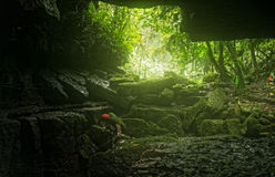 Speleologist Descending Into Mayei Cave Stock Photography