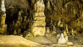 Speleothems in Vartop-Gletsjerhol, Apuseni-Bergen, Roemenië stock fotografie