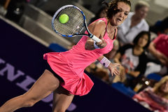 Speler Aginieszka Radwanska van het wereld de vrouwelijke Tennis Stock Afbeelding