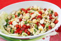 Spelled salad. Delicious spelled salad with vegetables royalty free stock photography