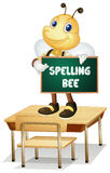 Spelling bee. Illustration of a bee holding a spelling bee sign Stock Image