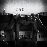 Spelling cat. On paper in typewriter stock images