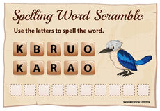 Spelling word scramble for word kookabura Royalty Free Stock Image