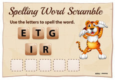 Spelling word scramble for word tiger Stock Image