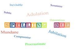 Spellingsbij die uit met brievenblokken wordt gespeld. Royalty-vrije Stock Foto's