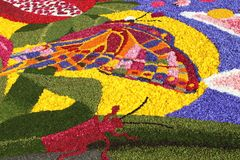 Infiorata of Spello, Italy. SPELLO, ITALY - JUNE 7: Floral Carpet on June 7, 2015 in Spello, Italy. This event takes place every year and every sector honors a stock photography