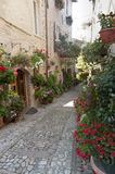 Spello, old street. Spello (Perugia, Umbria, Italy), old typical street with potted plants and flowers stock photo
