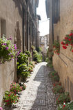 Spello, old street. Spello (Perugia, Umbria, Italy), old typical street with potted plants and flowers royalty free stock image