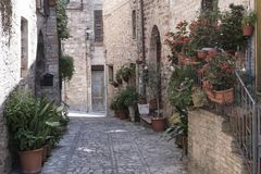 Spello, Perugia, medieval city Royalty Free Stock Photography