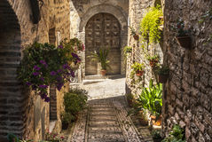 Spello (Umbria). Spello (Perugia, Umbria, Italy) - Typical alley with potted plants and flowers stock photo