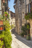 Spello (Umbria). Spello (Perugia, Umbria, Italy) - Typical alley with potted plants and flowers stock images