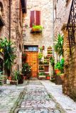 Spello Summer Blooms Entrance to a Home. Each spring, Spello blooms wildly, causing hundreds of thousands of tourists to flock to the small city for photos. Here stock images