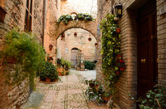 Spello - Umbria Royalty Free Stock Photos