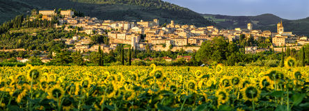 Spello (Umbria Italy) Royalty Free Stock Image