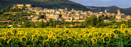 Spello Umbria Italy. And landscape stock photos