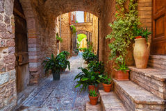 Spello, Umbria, Italy Stock Image