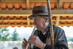 Spelmannen spelar musik Yablunytsia semesterort Bukovel, Ukraina Royaltyfri Bild