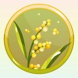 Spelpictogram met Mimosabloem Stock Afbeeldingen