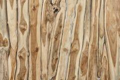 spelrum med lampa Wood textur för teakträ abstrakt yttersida Royaltyfri Bild