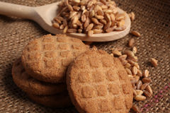 Spelt cookies and spoon Stock Image