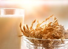 Spelt drink in glass in a rustic kitchen close up stock photo