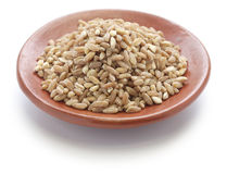 Spelt, farro, primitive wheat Royalty Free Stock Images