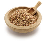 Spelt, farro, primitive wheat. On white background Royalty Free Stock Photo