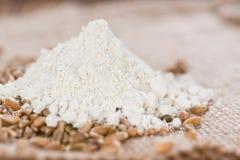 Spelt Flour Stock Image