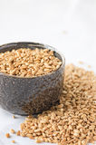 Spelt grains in a bowl Royalty Free Stock Image