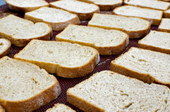 Spelt loaf. Set of buckwheat bread sliced Royalty Free Stock Images