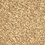 Spelt organic wheat cereal texture or background Stock Photography