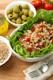 Spelt salad Royalty Free Stock Images