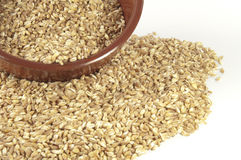 Spelt seeds in hearten cup. Spelt seeds like a background Royalty Free Stock Images